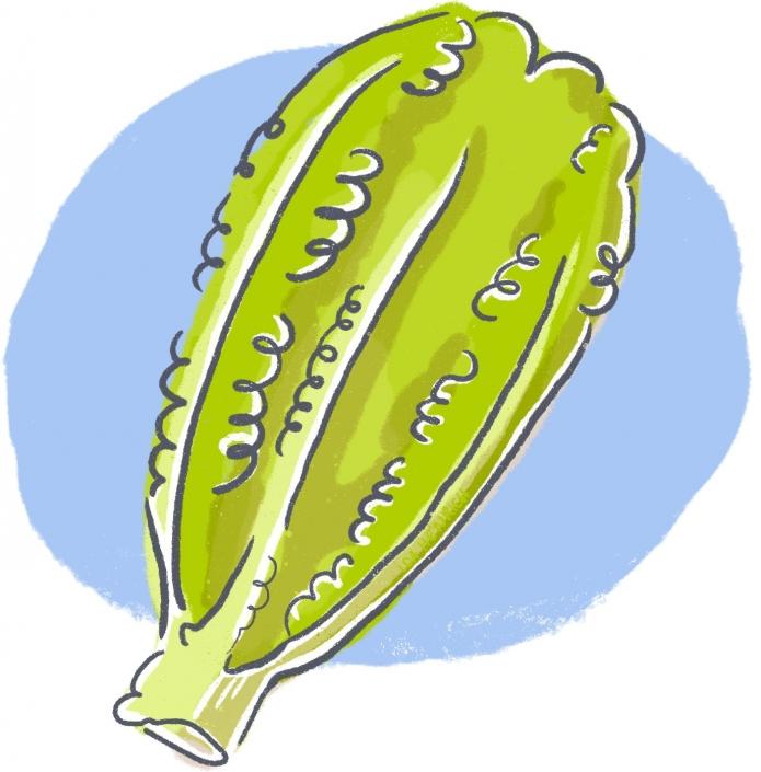 Gem salat | By Ida Henrich